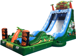 Tiki Falls Slide with Pool (new 2016) - $450