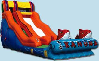 Big Kahuna Slide - $450